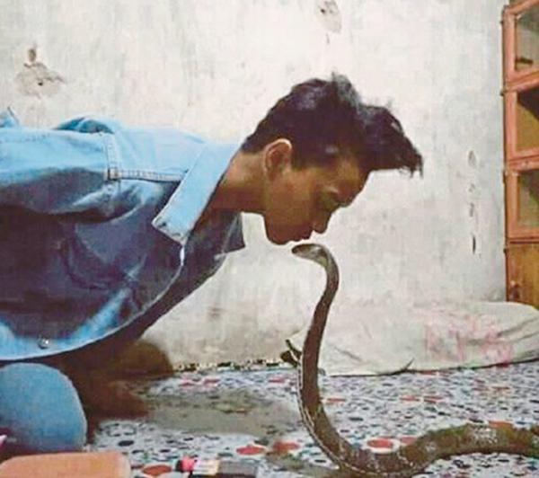 Aril có sở thích thu thập các loài rắn độc. Ảnh: AsiaWire