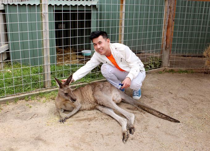 Công viên quốc gia Maru Koala đang nuôi dưỡng rất nhiều loài thú, đặc biệt là những chú kangaroo hiền lành, thân thiện với du khách.