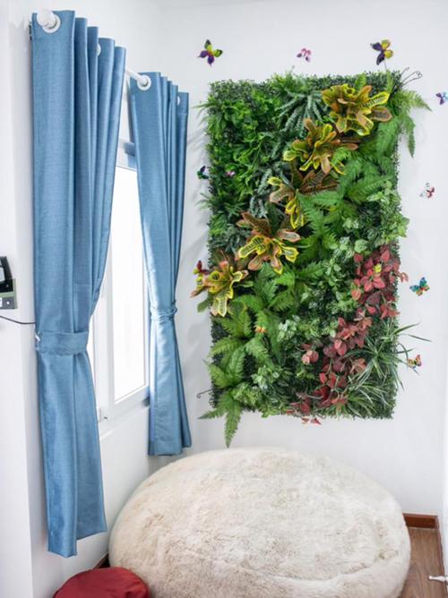 Trân gợi ý, khung lá nên chọn họ dương xỉ sẽ giúp tường nhà đẹp hơn.
