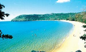 Du lịch Côn Đảo ngắm hoa anh đào cùng sao gần năm triệu đồng