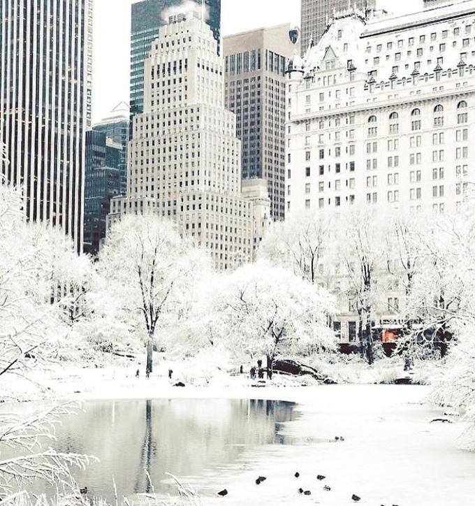 Bắc Mỹ đang trải qua đợt lạnh kỷ lục, nhiều nơi nhiệt độ xuống tới âm 50 - 60 độ C, trong đó có nhiều thành phố lớn. Giá lạnh cản trở hoạt động sinh hoạt của người dân nhưng cũng mang đến hình ảnh khác lạ, thú vị cho khách du lịch. Một góc quảng trường thành phố New York được phủ một màn tuyết trắng như trong truyện cổ tích.