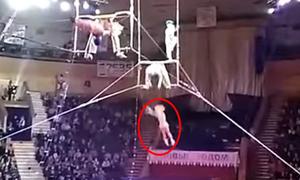 Trượt khỏi tay bạn diễn, nghệ sĩ xiếc rơi cả chục mét xuống đất