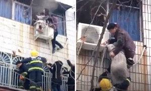 Tay không trèo lên cửa sổ tầng 3 để cứu bà bầu khỏi đám cháy