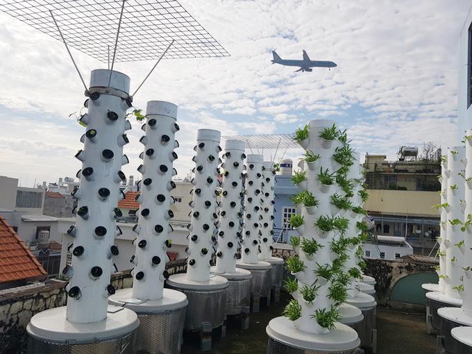 Nhận thấy việc trồng rau bằng phương pháp thổ canh tồn tại nhiều hạn chế, anh Sơn nảy ra ý địnhthử nghiệm mô hình khí canh. Ông bố Sài thành tham khảo hệ thống trồng rau khí canh theo công nghệ của NASA (Mỹ), mày mò cách làm và cải tiến cho phù hợp với điều kiện thời tiết tại Việt Nam.