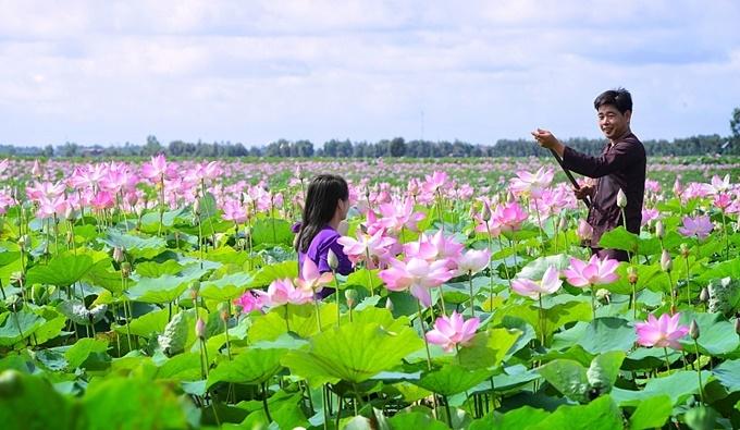 Lên lịch sẵn cho kế hoạch 'săn hoa' khắp 12 tháng trong năm