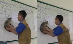 Nam thanh niên dùng mèo để làm khăn lau bảng