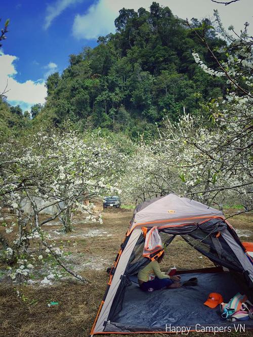 Lên Mộc Châu cắm trại giữa mùa thập lý hoa đào - 1
