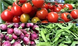 Hội chợ rau củ quả cao nguyên Lâm Viên tươi rói giữa Sài Gòn