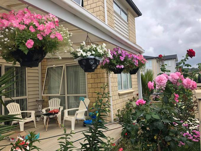 Chị Mơ bắt đầu cải tạo khu vườn cách đây hai năm sau khi mua ngôi nhà nằm trên thửa đất rộng hơn 400 m2. Chị trồng rất nhiều loại hoa, chủ yếu là hoa hồng, cẩm tú cầu, cẩm chướng, thược dược; các loại mọc từ củ như ly, lay ơn, lan Nam Phi, tulip hay các loại theo mùa khác: phong lữ, dạ yến thảo, ngàn sao... Trước khi trồng, chị mơthường tìm hiểu kỹ về đặc tính của cây để biết cách phát triển chúng tốt nhất. Chịhay lên mạng tìm kiếm thông tin về cách chăm sóc và đọc hướng dẫn của từng loại hoa.