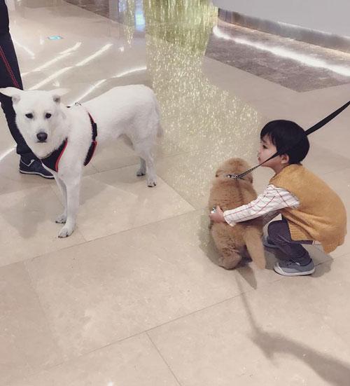 Aithan tự coi mình là anh trai của Molly và quấn quýt không rời với con chó.