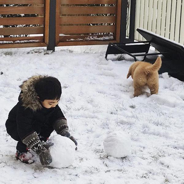 Tình bạn khăng khít của cậu bé 3 tuổi và chó cưng - 5