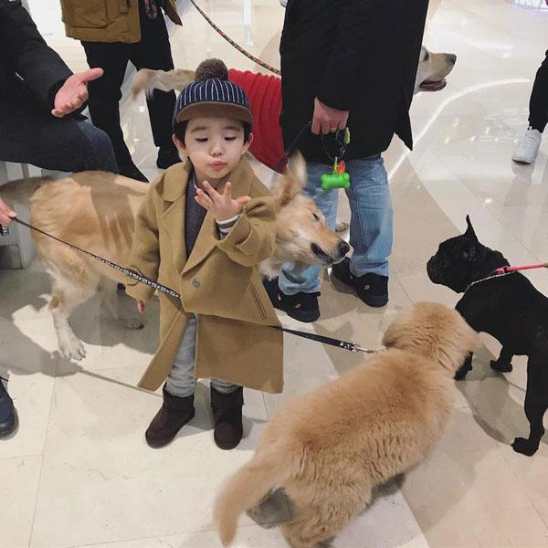 Aithan thỉnh thoảng còn được mẹ đưa đi gặp hội những người yêu chó.