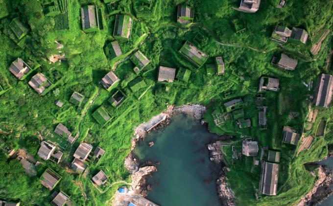 Ngôi làng bị bỏ hoang ba thập kỷ bỗng hút khách vì cây cỏ phủ đầy - 1