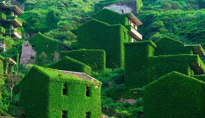 Ngôi làng bị bỏ hoang ba thập kỷ bỗng hút khách vì cây cỏ phủ đầy