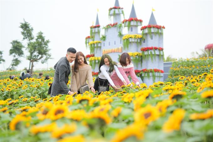 Sun World Ba Na Hills Tết này sẽ rực rỡ với một lễ hội hoa quy mô lớn.
