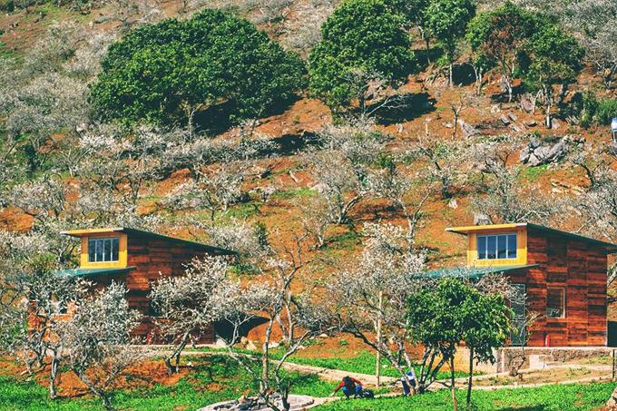 Những khu nghỉ giữa rừng dành cho ai muốn gần Hà Nội - 4