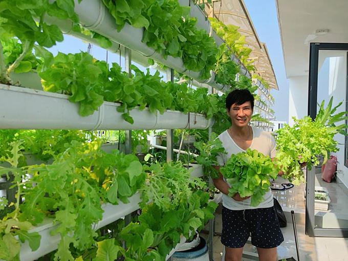 Lý Hải cùng vợ con hăm hở thu hoạch xà lách trên sân thượng để chuẩn bị bữa tối.