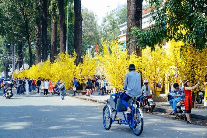 Mai vàng và áo dài đua nhau khoe sắc ở phố ông Đồ Sài Gòn