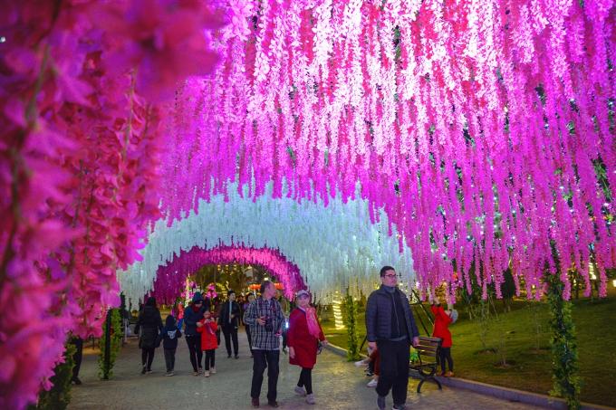 Lễ hội Kỳ quan muôn sắc hoa thu hút nhiều du khách - 4