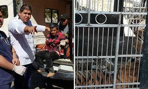 Nhân viên rạp xiếc mất cả hai cánh tay khi cho hổ uống nước