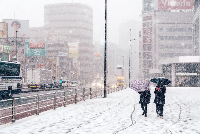 Tokyo đẹp 'nghẹt thở' trong màn tuyết giá buốt