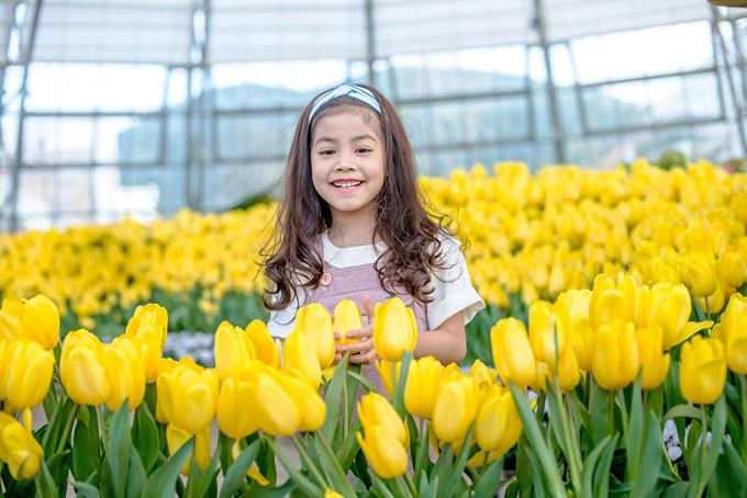 Vườn hoa tulip bung nở tạiVinpearl Land.
