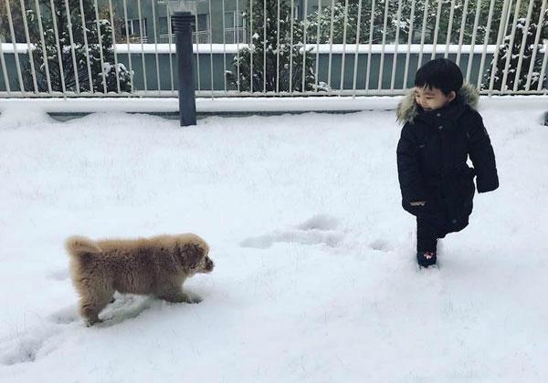 Cả hai đùa nghịch dưới tuyết.