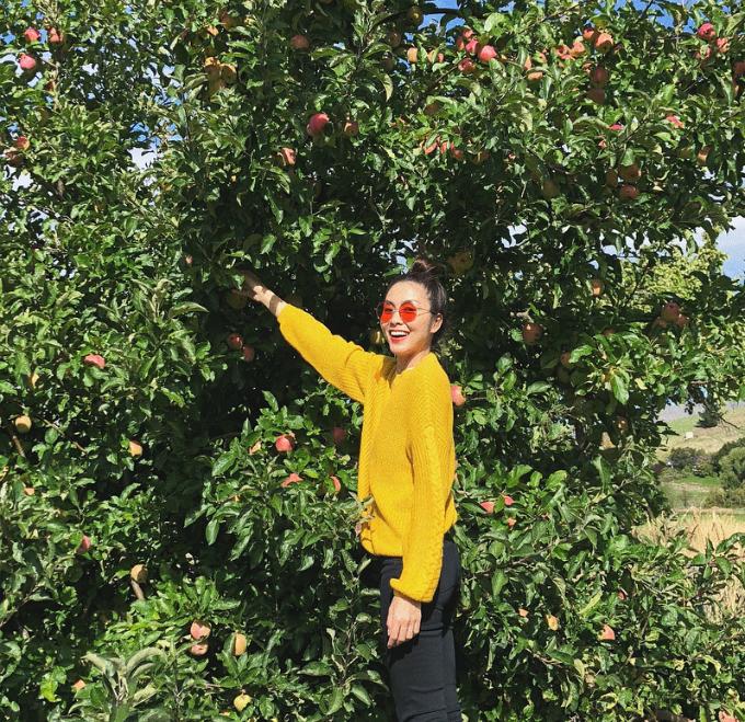 Tăng Thanh Hà ra thăm vườn và chia sẻ: Lần đầu thấy cây táo! Mặt hớn hở dễ sợ.