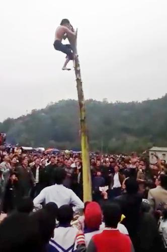 Nam thanh niên trèo lên ngọn cây chuối và đã giật được phần thưởng treo trên ngọn cây nhưng chưa được coi là thắng cuộc mà phải đứng lên ngọn cây theo yêu cầu của ban tổ chức trò chơi. Ảnh cắt từ video