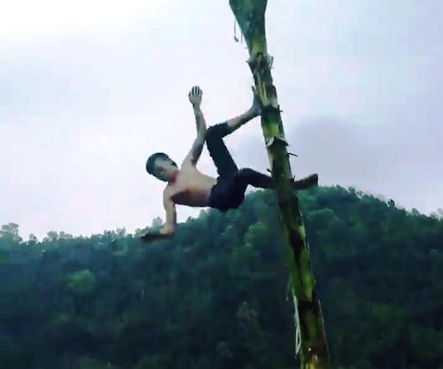 Hoàng Văn Phúc ngã từ ngọn cây chuối cao hơn 4 m xuống đất, bất tỉnh tại chỗ nhưng số phận đã mỉm cười với thanh niên này. Ảnh cắt từ video