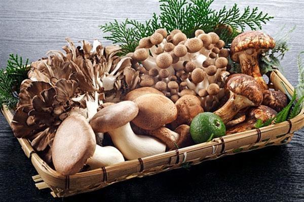 Nấm chứa chất đạm và vitamin C nhưng lại chứa rất ít hàm lượng calo và chất béo, do đó có thể giúp giảm cân nhanh hơn và cũng có thể trợ giúp cho việc làm căng cơ.