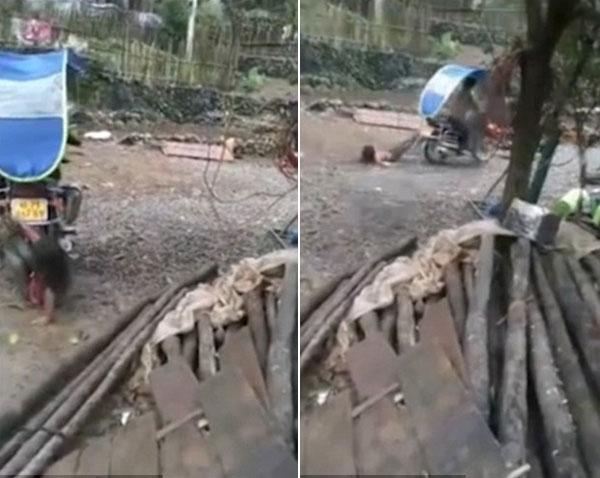 Bố trói chân con gái vào xe máy, kéo lê qua đoạn đường rải đầy sỏi đá - 1