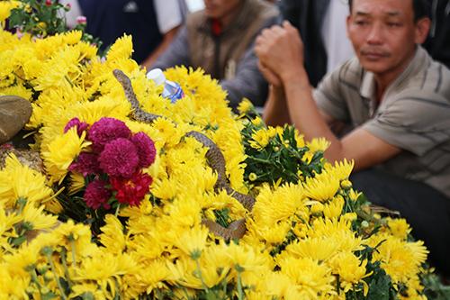 Con rắn thần được nhà chức trách Quảng Bình bắt đi khỏi ngôi mộ, giảm lượng người đổ về đây. Ảnh: Quảng Hà