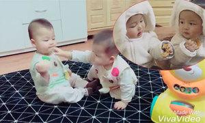 Cặp song sinh 10 tháng tuổi giành nhau bánh ăn