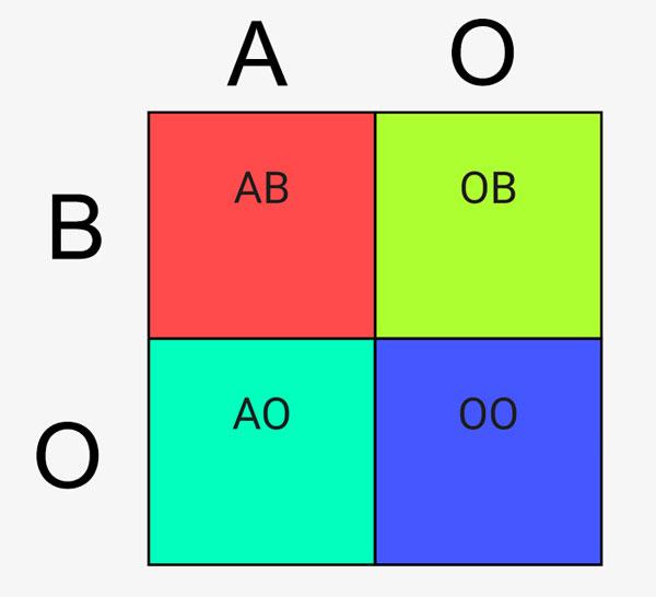 Hình vuông Punnett được ứng dụng rộng rãi trong môn sinh học để dự đoán kết quả di truyền nhóm máu.