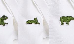 Lacoste thay logo cá sấu để bảo vệ động vật sắp tuyệt chủng