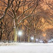 Những trải nghiệm không thể bỏ lỡ khi trời lạnh ở New York
