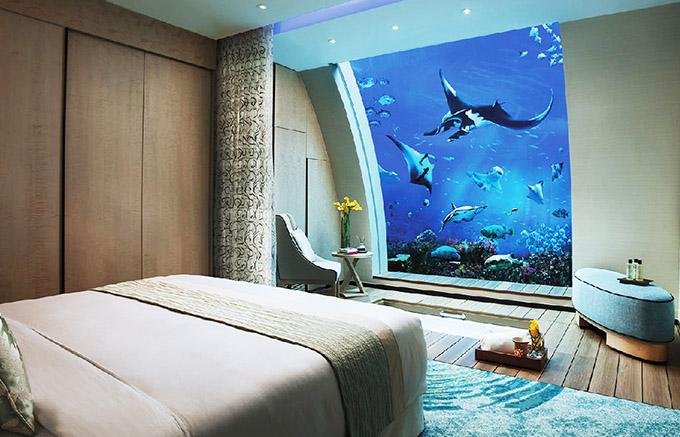 Khách sạn nơi bạn ngủ dưới thuỷ cung