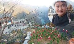 Ông bố người Tày đầu tư 500 triệu đồng trồng hoa trên đồi đá