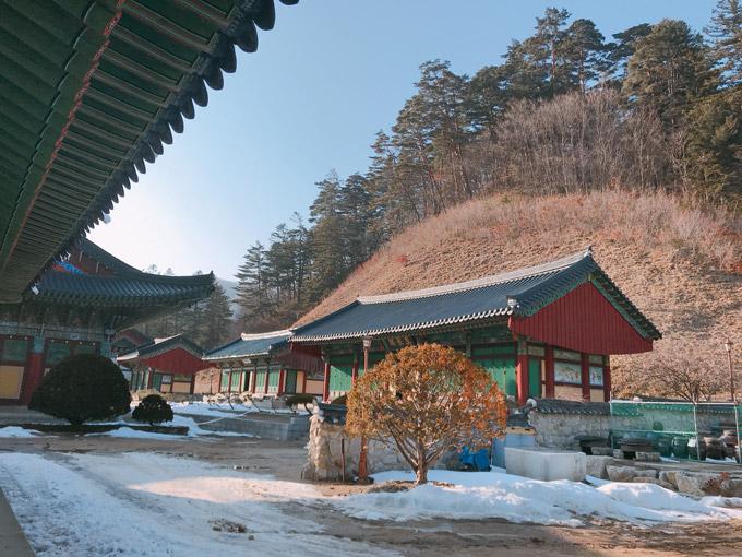 Ngôi đềnbao gồm quần thể di tích Phật giáo truyền thống với 60 ngôi đền, 8 tu viện. Sau chiến tranh với Triều Tiền vào năm 1950, nhiều công trình của ngôi đềnbị thiêu hủy và hiện nay đã đượcphục dựng.