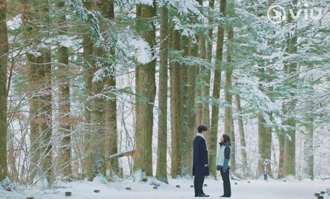 Con đường dài hơn 1km nằm giữa rừng thông dẫn vào ngôi chùa trở nên nổi tiếng khi xuất hiện trong phim Golbin (Yêu tinh). Khung cảnh cả rừng thông được bao phủ đầy tuyết trắng vô cùng lãng mạn là nơi