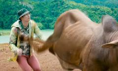 Huy Khánh bị bò đá, Kiều Minh Tuấn ngồi xe lăn trong phim của Lý Hải