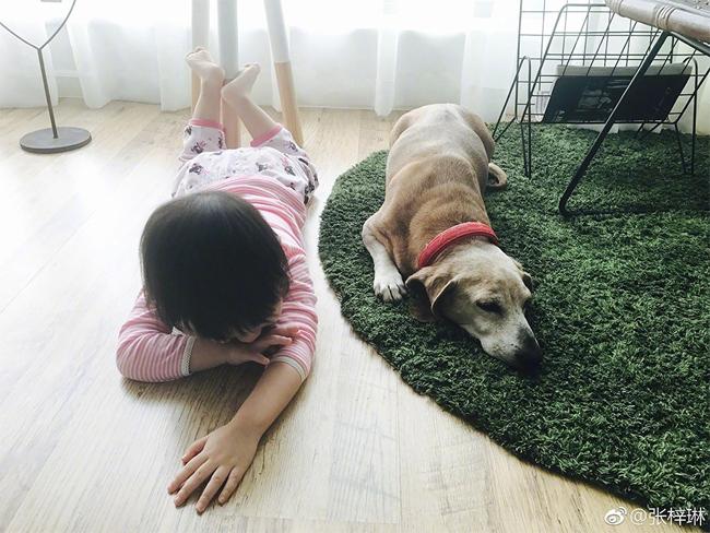 Phòng khách là nơi con gái nhỏ của cô chơi đùa với chó cưng...