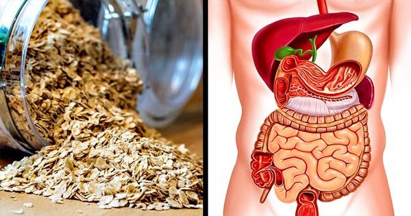 8 lợi ích đối với cơ thể khi bạn ăn yến mạch vào mỗi sáng