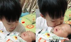 Con trai chưa đầy 4 tuổi của Nghiêm Xuân Tú vừa ôm em vừa hát ru