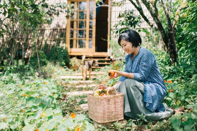 ... và thu hoạch trái ngọt trong vườn nhà.