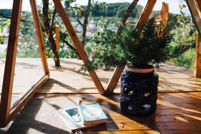 Những chậu cây nhỏ xinh là đồ trang trí xuất hiện nhiều hơn cả trong ngôi nhà gỗ của chị Yến.