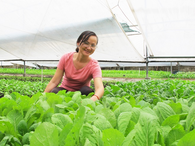 Nữ thạc sĩ mê trồng rau hữu cơ 6 không (Chị Mai Liên duyệt giùm em ạ)