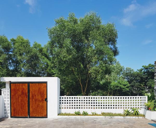 Kiến trúc sư người Quảng Bình trồng nhiều cây xanh trên khoảng sân rộng gần 100 m2.
