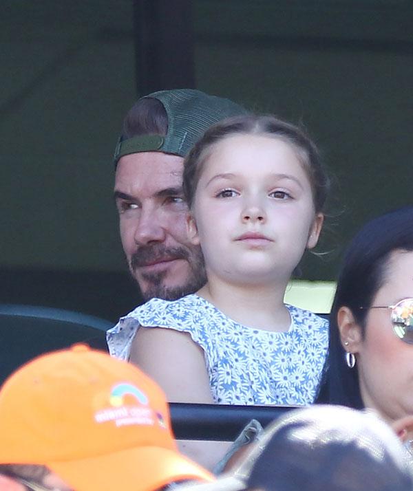 Cô nhóc Harper ngồi trong lòng bố, chăm chú theo dõi trận đấu.